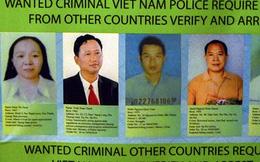 Nhiều quốc gia phối hợp truy bắt Trịnh Xuân Thanh