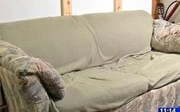 Ít tiền nên mua thanh lý chiếc sofa cũ xấu xí bốc mùi, 3 bạn trẻ bàng hoàng phát hiện bí mật giấu trong chiếc ghế