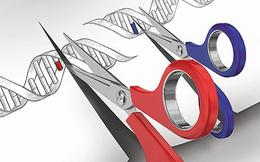 Vượt mặt Mỹ, các nhà khoa học Trung Quốc thử nghiệm chỉnh sửa gen người lần đầu tiên trên thế giới
