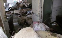 Vỡ kênh gây lũ quét kinh hoàng ở Nha Trang: Vì sao kênh vỡ?