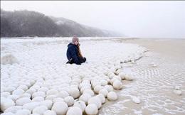 Xuất hiện những quả bóng tuyết tự nhiên kì lạ phủ trắng bờ biển Siberia, đường kính lên tới 1m