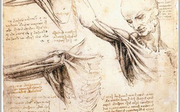 Bí mật xoay quanh các thiết kế đi trước thời đại cả trăm năm của Leonardo da Vinci