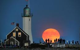 """Bí mật giúp các nhiếp ảnh gia luôn chụp được hình trăng to """"khủng"""""""