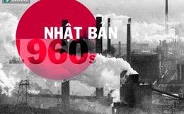 Phát triển và môi trường: Việt Nam học được gì từ sự lựa chọn tuyệt vời của Nhật Bản?