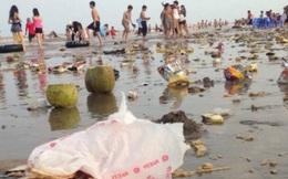 Tiến sĩ kinh tế xấu hổ cảnh xả rác ngập bãi biển của người Việt