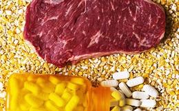 Câu chuyện phũ phàng về ngành chăn nuôi trong ác mộng nhờn kháng sinh