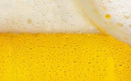 Sau khi tập luyện hoặc chơi thể thao, bạn có nên uống bia không?