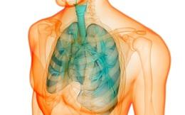 8 dấu hiệu cảnh báo phổi đang có vấn đề, bạn không được chủ quan!