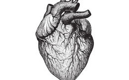 5 triệu chứng cấp báo bạn sẽ đau tim trong vòng 30 ngày