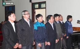 """8 cán bộ huyện, xã hầu toà vì """"ăn"""" đất trong dự án Formosa"""