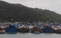 Tàu 'ma' trôi tự do trên biển La Gi