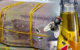 """""""Con ruồi trong chai Number1"""": Những câu hỏi chưa được làm rõ"""