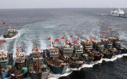 Việt Nam quan ngại sâu sắc về căng thẳngBiển Đông