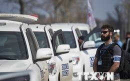 OSCE: Gần 30% vũ khí hạng nặng lưu giữ ở Donbass biến mất