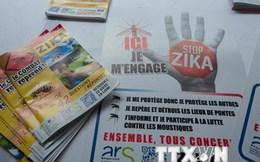 Chile xác nhận trường hợp đầu tiên nhiễm Zika qua đường tình dục
