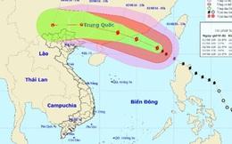Bão số 2 giật cấp 16-17 có khả năng đổ bộ trực tiếp vào Việt Nam