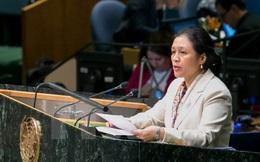Đại sứ VN: Hoạt động quân sự ở Biển Đông gây xói mòn lòng tin