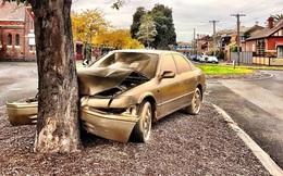 """Chiếc ô tô găm gốc cây bất ngờ được """"dát vàng"""" ở Australia"""