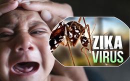 Việt Nam đã chấm dứt hẳn dịch bệnh Zika chưa?