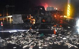 2 tấn cá bất ngờ bị hất văng xuống mặt đường, mất 300 triệu đồng lái xe không kịp trở tay