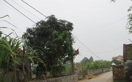 Nghệ An: Chồng treo cổ tự tử trong đêm sau khi tát vợ