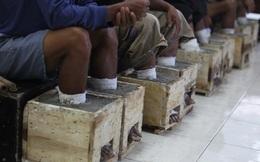 Đằng sau hình ảnh nông dân Indonesia đồng loạt chôn chặt chân trong xi măng