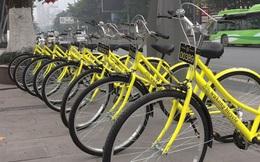 """Kinh doanh chưa được nửa năm, 90% số lượng xe đạp cho thuê đã """"không cánh mà bay"""""""
