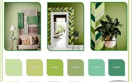 Phương pháp chọn màu sắc nhà theo phong thủy
