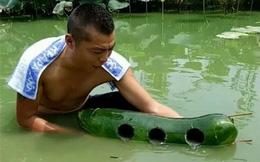 Khoét 3 cái lỗ trên quả bí đao rồi thả xuống nước, người đàn ông thu được món hời lớn