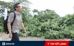 TIN TỐT LÀNH ngày 29/5: Hình ảnh tạo dấu ấn đặc biệt của Phó Thủ tướng Vũ Đức Đam ở Sơn Trà