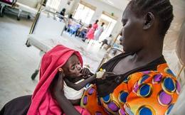 Chiến tranh liên miên, người dân Nam Sudan phải ăn cỏ dại và rong để sống qua ngày