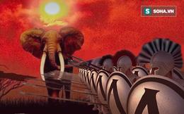 """Đàn voi """"bày trận Phalanx"""" giữa tiếng gầm sư tử: Bài học cho chính con người chúng ta!"""