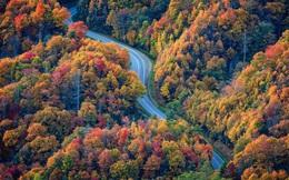 Du khách mù màu bật khóc khi lần đầu được nhìn thấy sắc màu rực rỡ của mùa thu