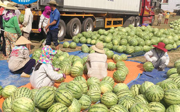 Đây là cách đại gia thép Hòa Phát giúp bà con nông dân Quảng Ngãi vượt qua khó khăn