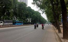 Di dời 1.300 cây xanh ở đường Phạm Văn Đồng mới chỉ là phương án đề xuất của chủ đầu tư