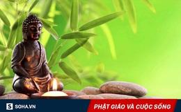 Đạo Phật dạy 1 điều, lĩnh hội được chúng ta sẽ hết khổ đau, an nhiên suốt cuộc đời