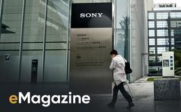 Ai đã 'giết' Sony?