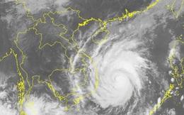 Chuyên gia thời tiết: Sức gió giật cấp 15, bão Con Voi có thể là bão mạnh nhất  năm 2017