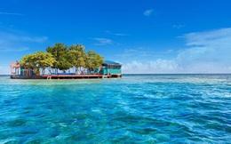 Hòn đảo Caribe có giá 600 USD/ngày cho khách tự làm Robinson Crusoe