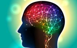TS Mỹ hướng dẫn cách ngủ giúp tẩy sạch chất độc trong não
