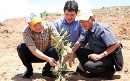 Chủ tịch tỉnh Quảng Trị đề xuất điều chuyển Chủ tịch huyện vì dự án mắc ca chậm trễ