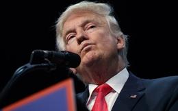 """Bộ máy chính phủ """"vườn không nhà trống"""" nói điều gì về phong cách lãnh đạo của Trump?"""