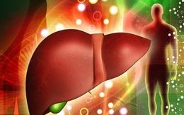 Gan nhiễm mỡ dù nhẹ cũng nguy hiểm: Những triệu chứng cần đến viện kiểm tra ngay