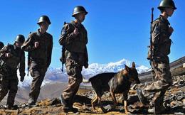 Trung Quốc mời phóng viên Ấn Độ đến Bắc Kinh, bác tin đồn chiến tranh