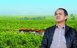 Chưa cần bán trái cây, bầu Đức đã ung dung thu về hàng trăm tỷ đồng