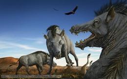 Nếu sinh ra sớm hơn, ta sẽ phải đối mặt với tê giác cao 6m hay lợn nặng cả tấn