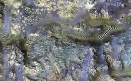 """NASA bất ngờ phát hiện """"đàn giun"""" ngoằn ngoèo quái lạ trên sao Hỏa"""