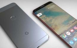Mọi thông tin về siêu phẩm smartphone Pixel 2 của Google trước ngày ra mắt