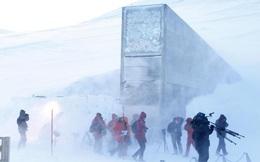 """Căn hầm """"tận thế"""" - nguồn dự trữ của cả thế giới đang gặp nạn vì băng tan"""