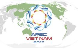 Chuyên gia Singapore: Việt Nam đang góp phần dẫn dắt tương lai APEC